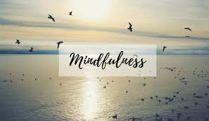 Mindfulness Can Change Your Brain!