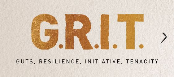 Grit: Your Key To Success & How to Get More Of It.